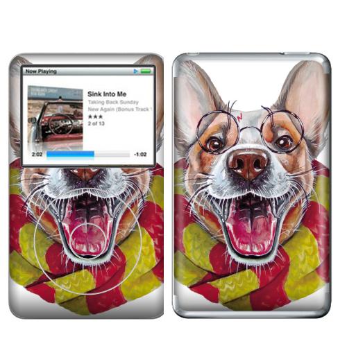 Наклейка на iPod&MP3 Apple iPod Classic Гарри Дог Плоттер,  купить в Москве – интернет-магазин Allskins, собаки, Гарри