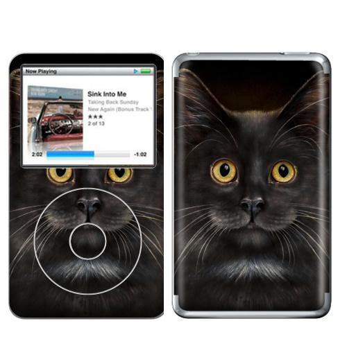Наклейка на iPod&MP3 Apple iPod Classic Желтоглазый кот,  купить в Москве – интернет-магазин Allskins, милые животные, животные, усы, кошка, глаз