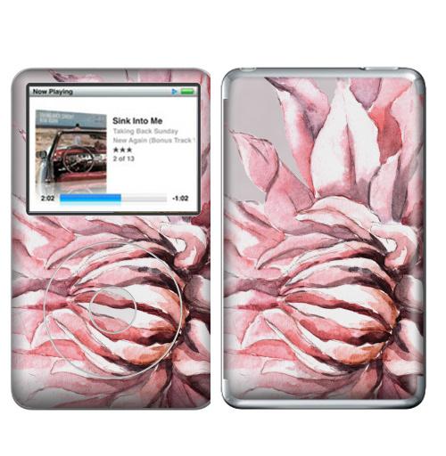 Наклейка на iPod&MP3 Apple iPod Classic Георгины,  купить в Москве – интернет-магазин Allskins, акварель, пастель, пастельный, пастельные, нежно, розовый, георгин, сиреневый, крупный, запечатка
