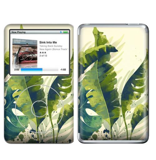 Наклейка на iPod&MP3 Apple iPod Classic Ветки пальм,  купить в Москве – интернет-магазин Allskins, пальма, ветка, рисунки, акварель, природа, экзотика, тропики, зеленый, брызги