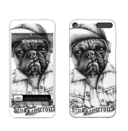 Наклейка на iPod&MP3 Apple iPod Touch 5th gen. Опасный мопс,  купить в Москве – интернет-магазин Allskins, черно-белое, Мопс, собаки, мило, кепка, дерзкий, татуировки, оскал, черное_и_белое, новый год