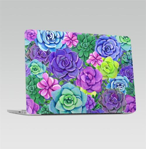 Наклейка на Ноутбук Apple Macbook Pro с Touch Bar Акварельные суккуленты,  купить в Москве – интернет-магазин Allskins, суккулент, суккуленты, акварель, акварельная, акварельные, цветы, разноцветное, цвет