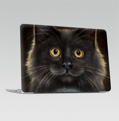 Наклейка на Ноутбук Macbook Pro 2016-2018 – Macbook Pro Touch Bar Желтоглазый кот,  купить в Москве – интернет-магазин Allskins, глаз, кошка, усы, животные