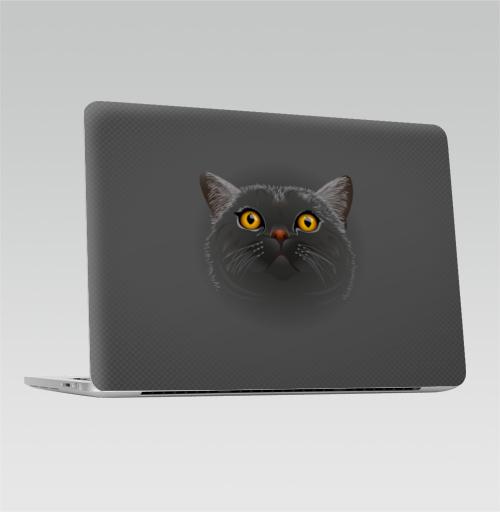 Наклейка на Ноутбук Macbook Pro 2016-2018 – Macbook Pro Touch Bar Котик любопытный,  купить в Москве – интернет-магазин Allskins, кошка, животные, позитив, ночь, Новые, теплый