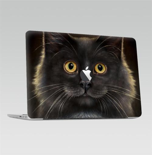 Наклейка на Ноутбук Macbook Pro 2016-2018 – Macbook Pro Touch Bar (с яблоком ) Желтоглазый кот,  купить в Москве – интернет-магазин Allskins, милые животные, животные, усы, кошка, глаз