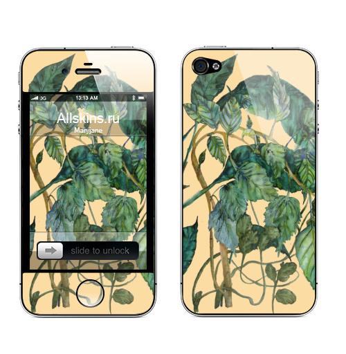 Наклейка на Телефон Apple iPhone 4S, 4 Путаница,  купить в Москве – интернет-магазин Allskins, акварель, листья, зеленый, флора, лес