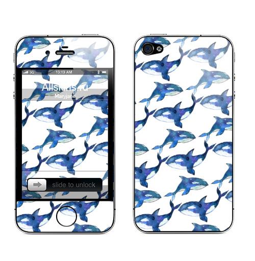 Наклейка на Телефон Apple iPhone 4S, 4 Косатки ,  купить в Москве – интернет-магазин Allskins, орка, косатки, спорт, животные, любовь, океаны, акварель, рыба