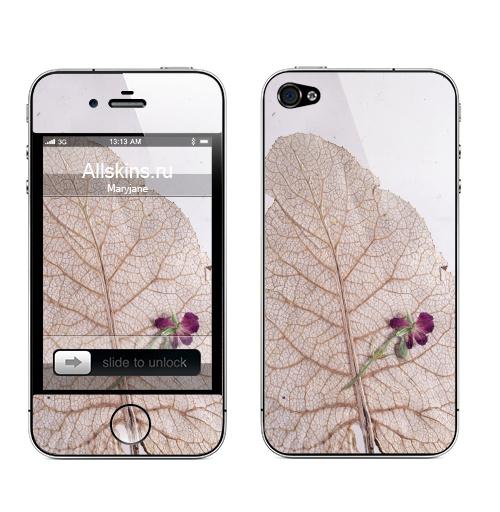 Наклейка на Телефон Apple iPhone 4S, 4 Папортник,  купить в Москве – интернет-магазин Allskins, цветы, листья, фотография, безобработки, лапух