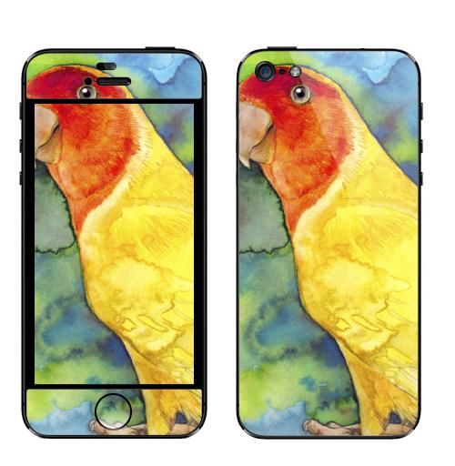 Наклейка на Телефон Apple iPhone 5 Розовощекий попугайчик,  купить в Москве – интернет-магазин Allskins, природа, птицы, птицы, экзотика, желтый, красный, зеленые, джунгли, листья