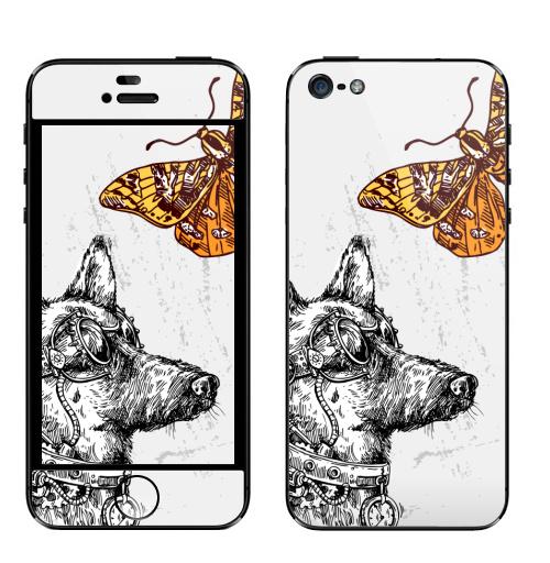 Наклейка на Телефон Apple iPhone 5 Пес-путешественник во времени,  купить в Москве – интернет-магазин Allskins, собаки, собаки, стимпанк, механизм, механика, фантастика, бабочки, механический, пестрый