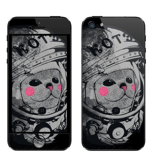 Наклейка на Телефон Apple iPhone 5 Котэ-космонафтэ,  купить в Москве – интернет-магазин Allskins, космокот, Гагарин, детские, 8 марта, астронавт, Юра, шлем, кошка, космос, черный