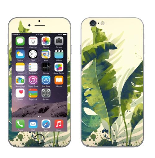 Наклейка на Телефон Apple iPhone 6, 6s Ветки пальм,  купить в Москве – интернет-магазин Allskins, пальма, ветка, рисунки, акварель, природа, экзотика, тропики, зеленый, брызги