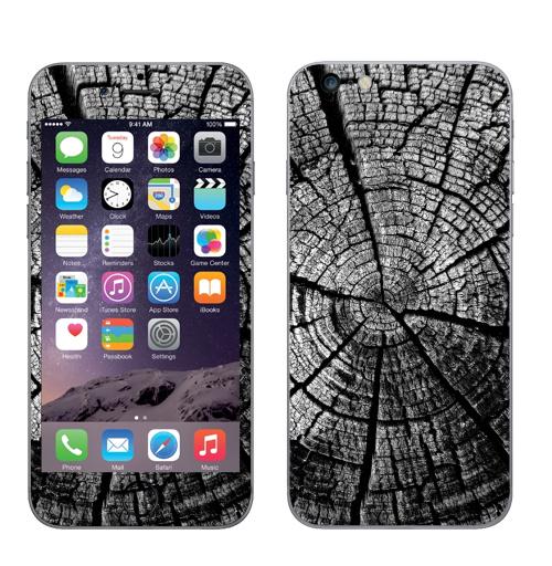 Наклейка на Телефон Apple iPhone 6 plus Кольца жизни,  купить в Москве – интернет-магазин Allskins, лес, деревья, лес, лесной, чернобелое, графика, серый, черное, черное