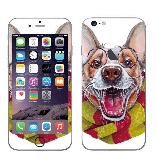 Наклейка на Телефон Apple iPhone 6 plus с яблоком Гарри Дог Плоттер,  купить в Москве – интернет-магазин Allskins, собаки, Гарри